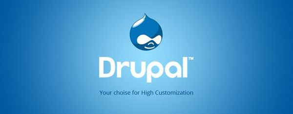 professional drupal programmers