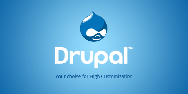 Image result for drupal developers