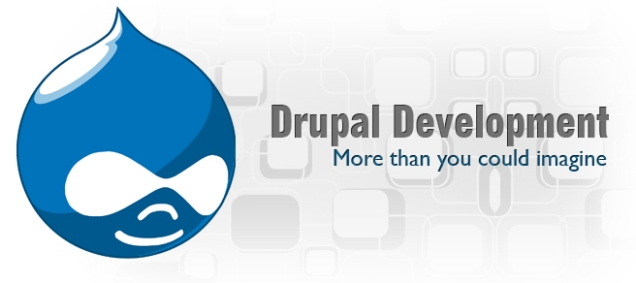 Choose The Best Drupal Developer For Your Website