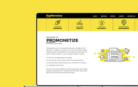 Online CMS System for Monetization Training Resources Management