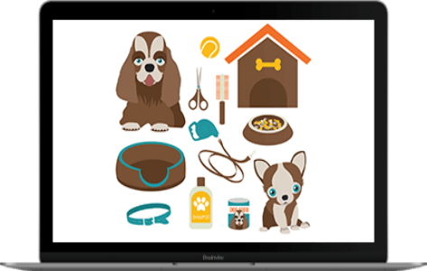 Digital Marketing Activities For an Online Pet Products Store