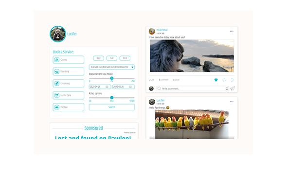 Social Media platforms for pet lovers