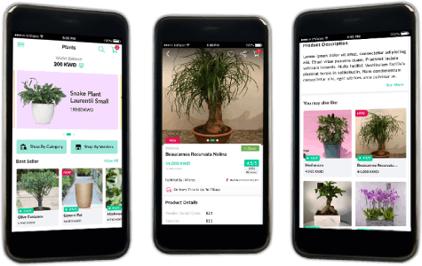 New Mobile and Web App To Create Digital Presence for Kuwait-based Marketplace