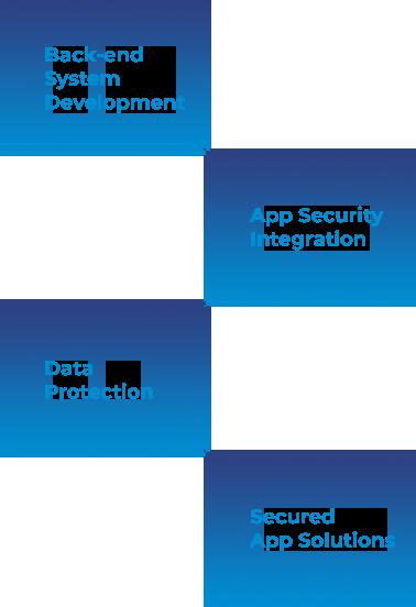 Enterprise Application Security
