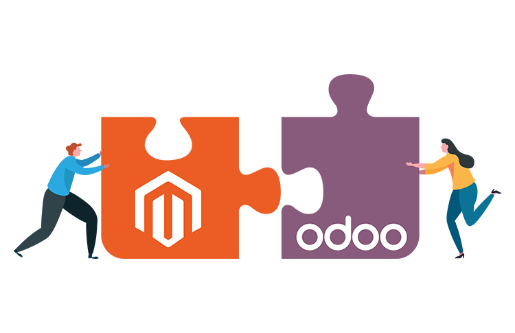 A Magento Store with Odoo Integration Smoothens Backend Functions for European Company