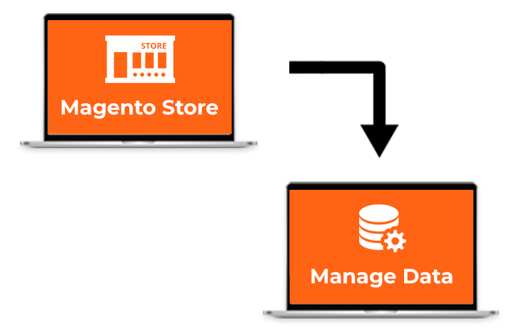 Magento Integration with PIM System Helped Sales Channels Streamline Data Management for a Power Tool Company