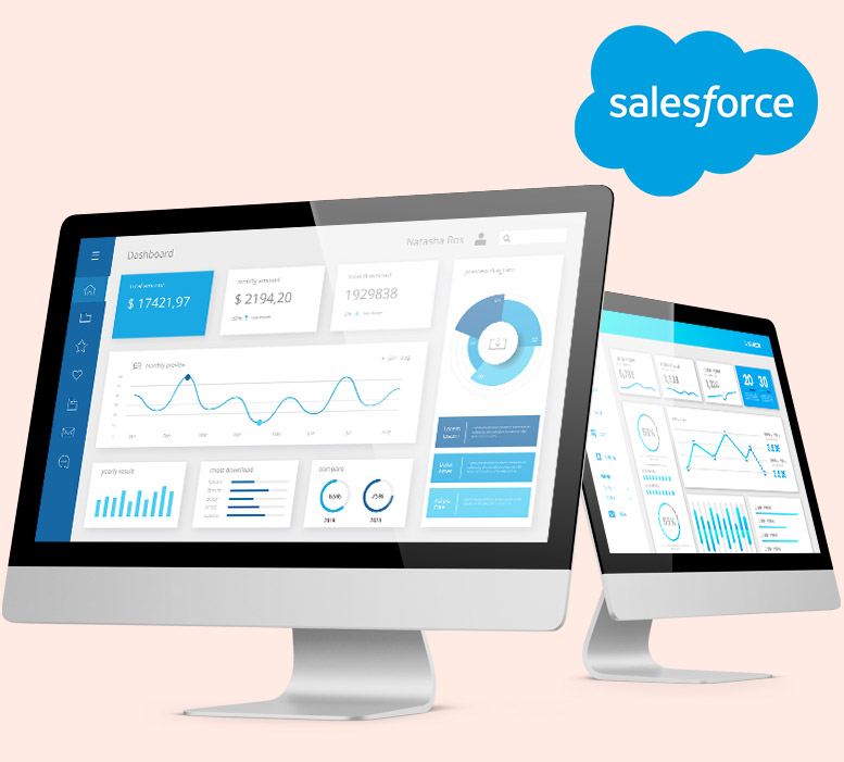 Conceptualized Salesforce Solutions