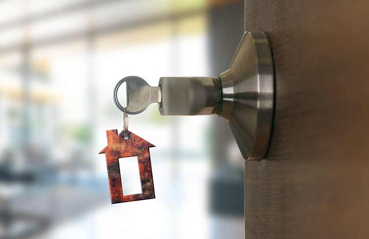 Brainvire's Odoo Solution is an Armor to a Door Security Expert