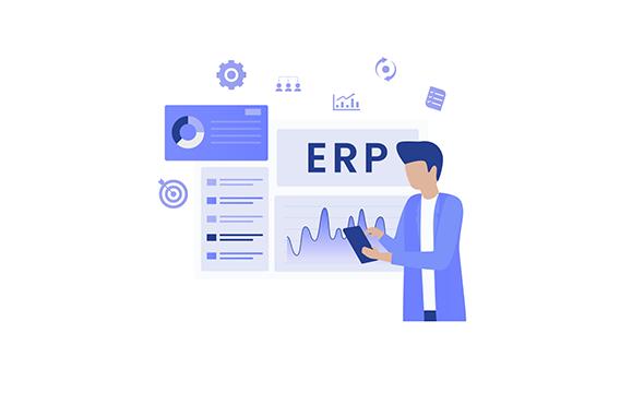 Customized ERP Set-Up: