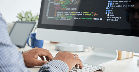 Standard Software Development