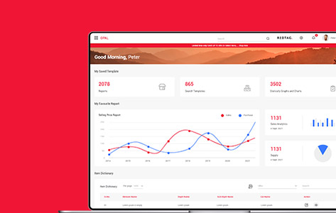 Ecommerce Brand Attains Economic Viability with Brainvire-Designed Reporting Software